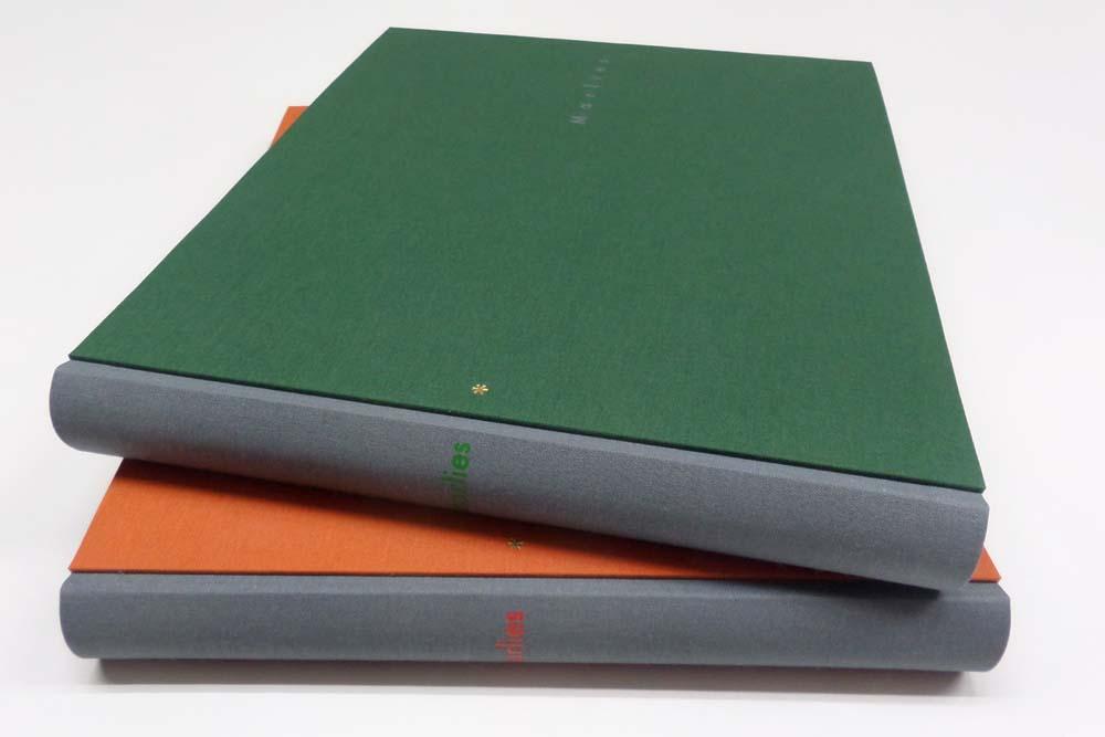 grauer Buchrücken, Deckel orange und grün, Prägung der Namen