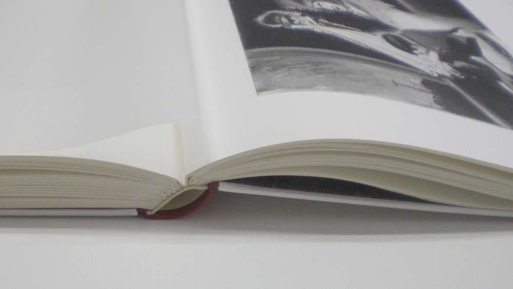 50 Photogravure-Tafeln an Fälze gehängt, dazwischen Pergamynpapier