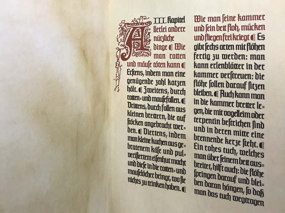 Texturschrift, handgezeichnete Initialen, Hintergrund Pergamentoptik