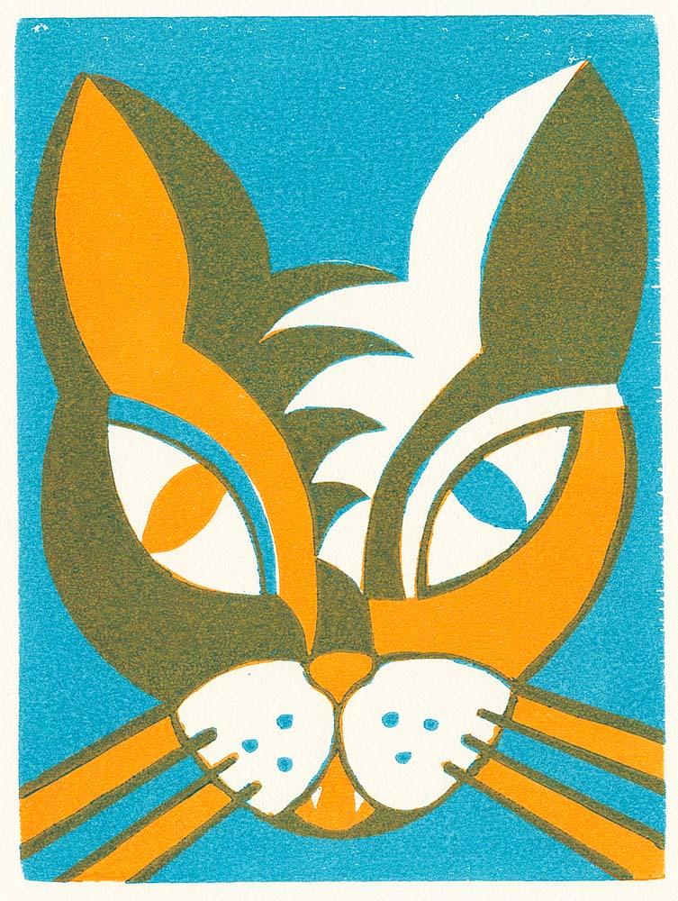 Katzengesicht mit einem orangfarbenen und einem blauen Auge